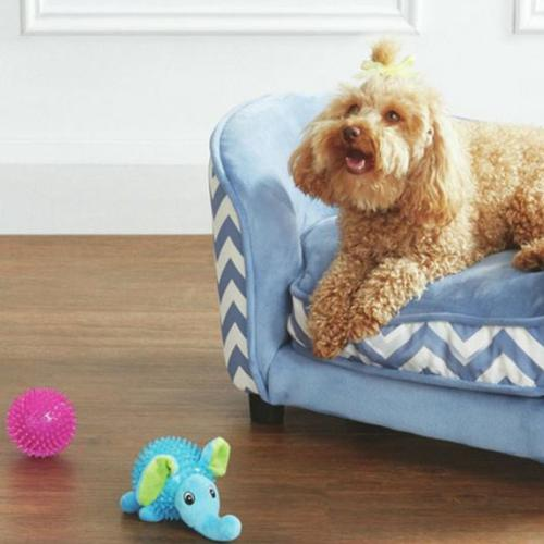 Aldi Have Launched A Pet Range For Their Latest Special Buy