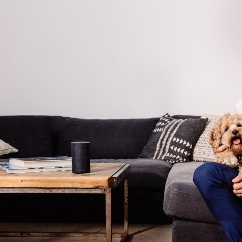 Bachelor's Osher Gunsberg Helps Launch Audiobooks For Dogs
