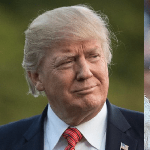 The Internet Has No Chill When It Comes To Donald Trump GIFs