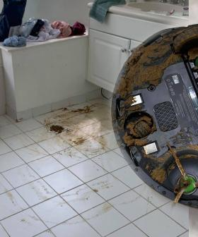 Man's Roomba Runs Over Dog Poo, Spreading It Throughout The House