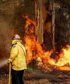 """Leave Now"" CFS Issues Major Warning On Catastrophic Fire Danger Day"