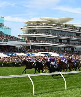Melbourne Cup 2019 Finishing Order (After A Protest Upheld)