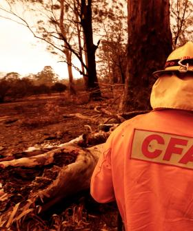 Government Relaxes Backpacker Visas To Help Bushfire Affected Towns