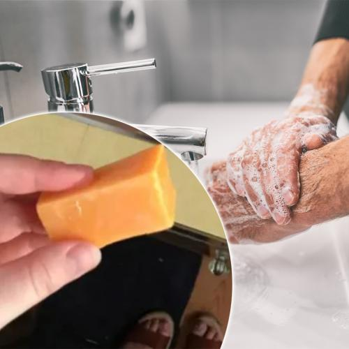 Woman Shocked To Discover She's Been Washing Her Hands For Days With A Block Of Cheese