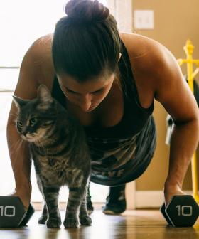 Stars Wars P.T. (& Mix 102.3's Own) Simon Mitchell Shares His 15 Minute Home Workout
