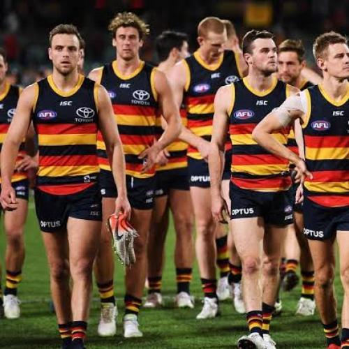 Adelaide Crows Under Investigation By AFL, Police Informed