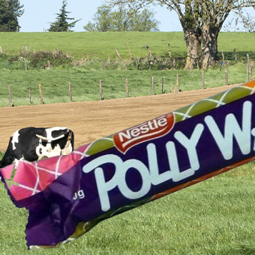 There Are Now Calls To 'Veganise' The Polly Waffle When It Returns To Shelves