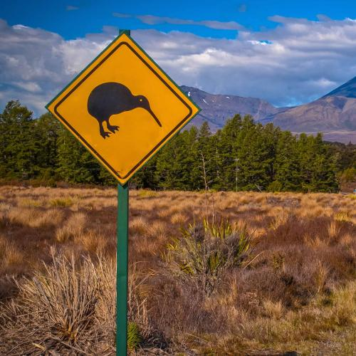 South Aussies Could Be Allowed To Travel To NZ Soon If The Premier Gets His Way