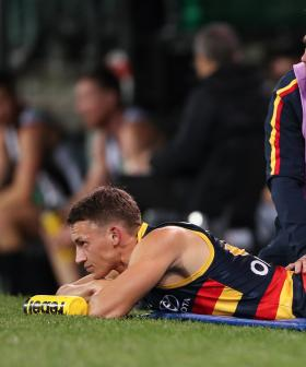 Crows Lose Acting Captain Tom Doedee For The Rest Of The Season