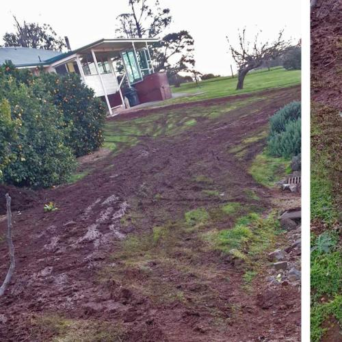 Soda's Dad Loses His #### After Tradies Left His Yard Looking Like This