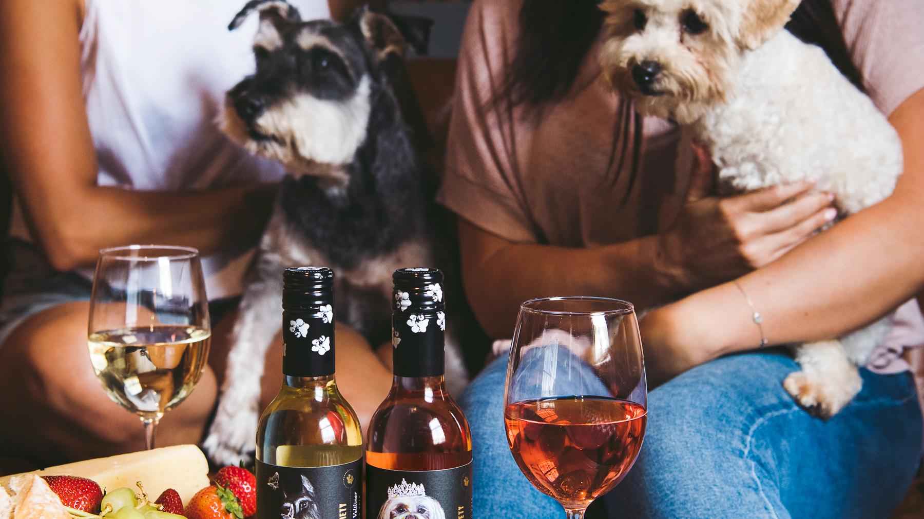 image for You Can Help Save Rescue Pets Just By Drinking This Aussie Wine!