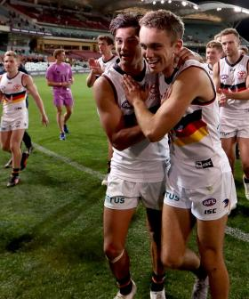 A Freo Fan Made A Gross Promise If Adelaide Won A Game This Year, We Reckon He Regrets It Now
