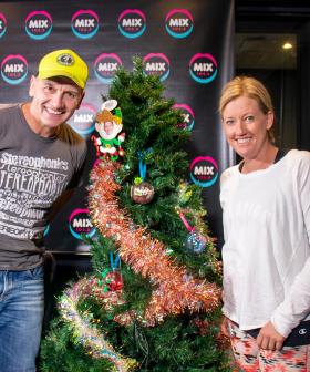 Jodie & Soda's Christmas Decoration Challenge