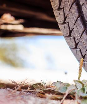 The Easy Hack To Buying Tyres That The Environment Will Love You For!