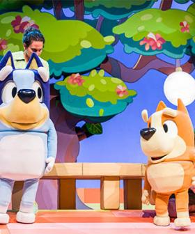 'Tap Your Foot And Hum' - Bluey Stage Show Says No Singing Allowed, Kids