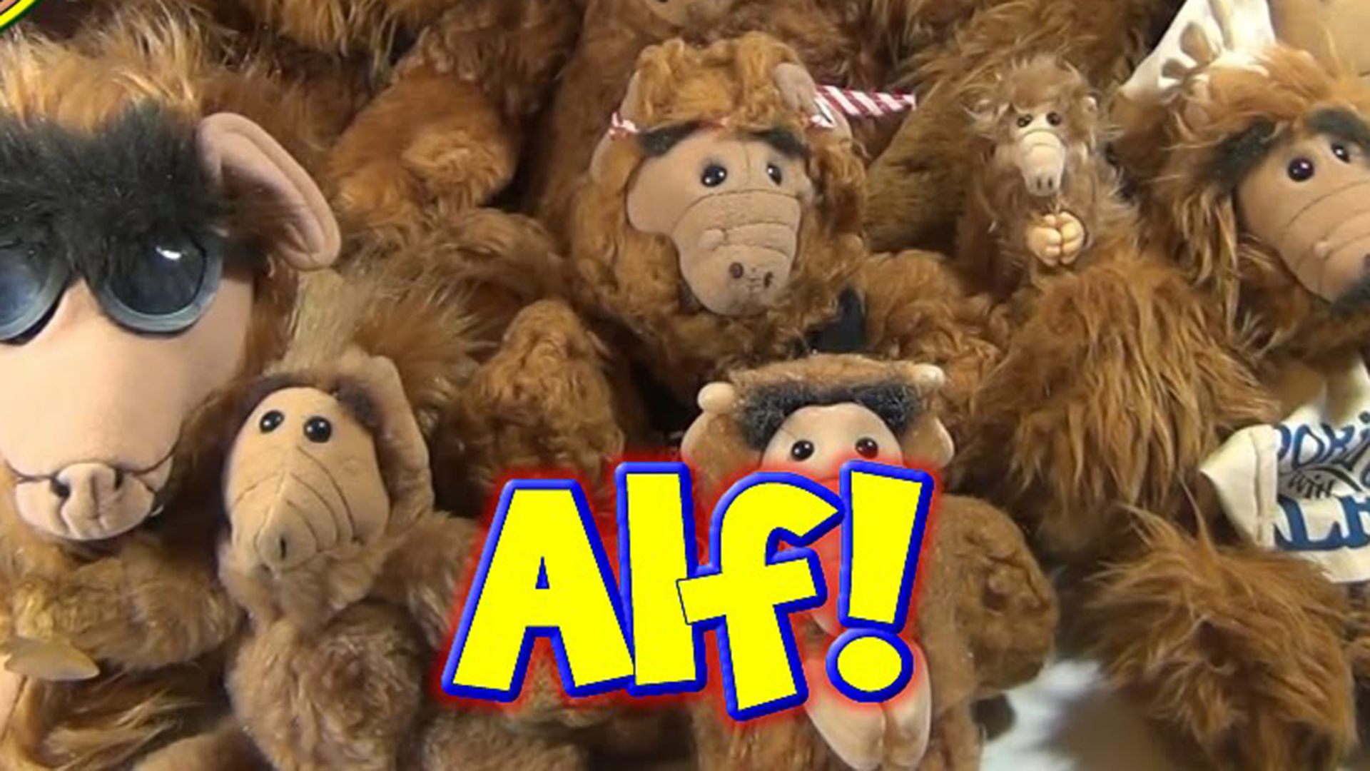 image for WE NEED YOUR HELP! #Operation ALF