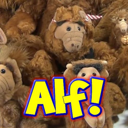WE NEED YOUR HELP! #Operation ALF