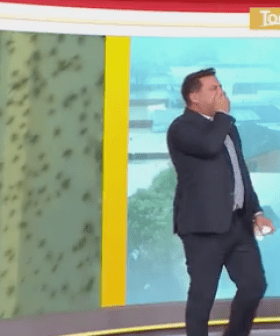 Karl Stefanovic's Horrified Reaction Is Priceless When A Man Lets Spiders Crawl On Him
