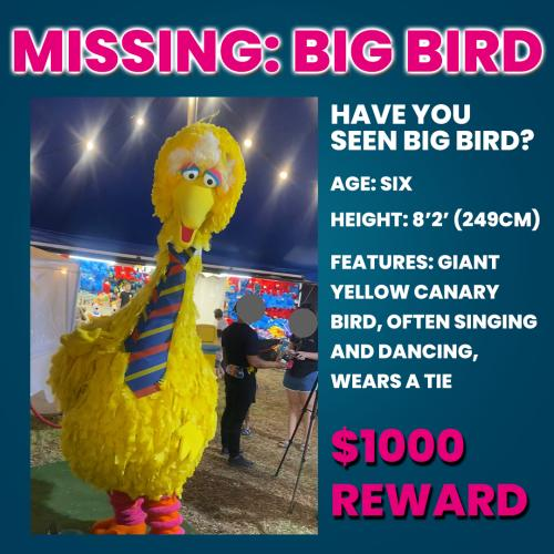Erin & Soda Are Offering a $1000 REWARD For Big Bird's Safe Return