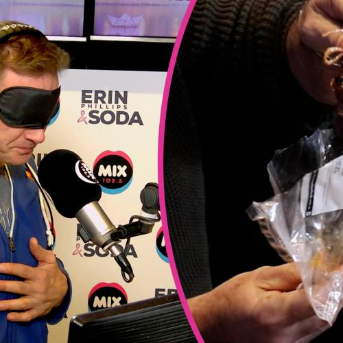Erin & Soda Are Blindfolded And Try Some Weird (DISGUSTING) Food