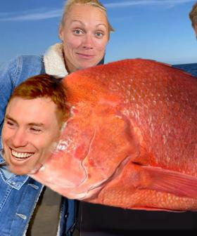 Does Something Smell Fishy To You? Turns Out It Could Be Tom Lynch!