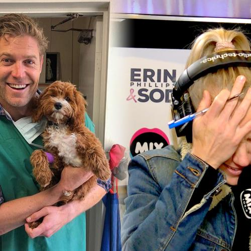 Dr Chris Brown Swoops In To Solve Erin's Puppy Problem