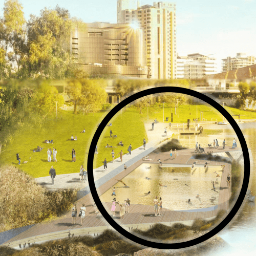 If You Could Swim in the River Torrens...Would You?