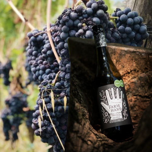 This South Aussie Organic Shiraz Is Converting Non-Wine Drinkers, And Has Connoisseurs Tick Of Approval!