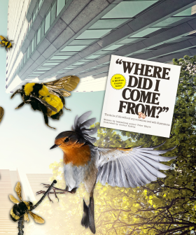 """This Parent Tried To Have A """"Birds And The Bees"""" Talk And It Went TERRIBLY WRONG!"""